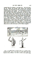 Pagina 517