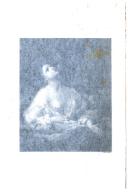 Pagina 514